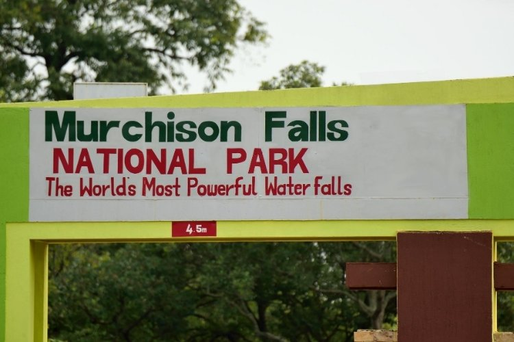 murchison falls YouTube Video